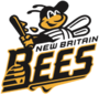 NB Bees.png