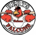 Herts Falcons.png